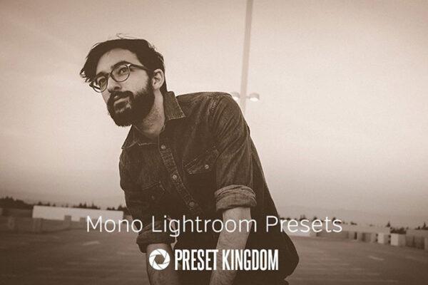 دانلود 10 پریست رنگ لایت روم تم تک رنگ Mono Lightroom Presets