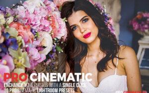 دانلود 10 پریست لایتروم سینماتیک Pro Cinematic Lightroom Presets