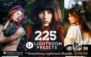 دانلود 225 پریست لایت روم مخصوص دسکتاپ Lightroom Presets Bundle