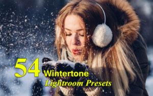 دانلود 54 پریست لایت روم زمستان Wintertone Lightroom Presets