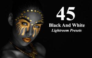پریست لایت روم افکت سیاه و سفید Black And White Lightroom Presets