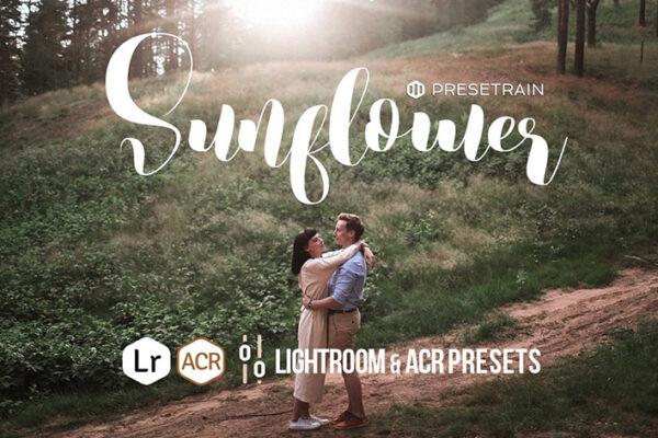 14 پریست لایت روم و کمرا راو تم روز آفتابی Sunflower Lightroom & ACR Presets