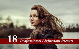 18 افکت پریست لایت روم دسکتاپ حرفه ای Professional Lightroom Presets