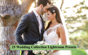 25 پریست لایتروم مخصوص عروسی Wedding Collection Lightroom Presets