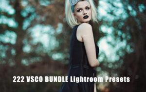 دانلود 222 پریست رنگی آماده لایت روم VSCO BUNDLE Lightroom Presets