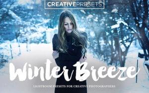 16 پریست لایت روم و براش لایتروم زمستان Winter Breeze Lightroom Presets