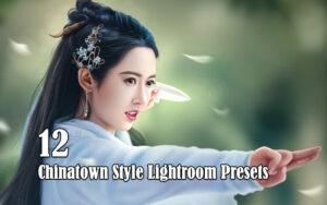 12 پریست لایت روم تم رنگی چین Chinatown Style Lightroom Presets
