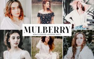34 پریست لایت روم و کمرا راو تم توت سفید Mulberry Mobile And Desktop Lightroom Presets