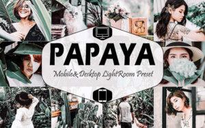 6 پریست لایت روم دسکتاپ و موبایل تم سبز Papaya Mobile And Desktop Lightroom Presets
