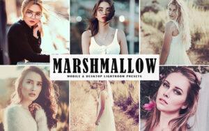 34 پریست لایت روم و پریست کمراراو تم گل ختمی Marshmallow Mobile And Desktop Lightroom Presets
