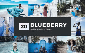 پریست لایت روم و پریست کمرا راو و لات رنگی تم آبی Blueberry Lightroom Presets & LUT