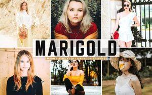 پریست لایت روم بهاری و پریست کمرا راو و اکشن فتوشاپ Marigold Pro Lightroom Presets