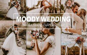 پریست لایت روم حرفه ای عروس پاییز Moody Wedding Lightroom Presets Fall LR