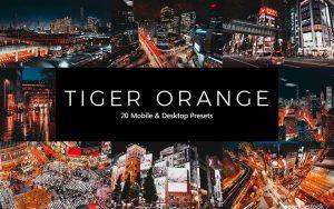 پریست لایت روم و کمرا راو و لات رنگی تم ببر نارنجی Tiger Orange Lightroom Presets & LUTs