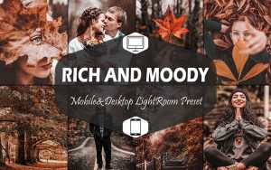 20 پریست لایت روم حرفه ای پاییز Rich And Moody Lightroom Presets Fall