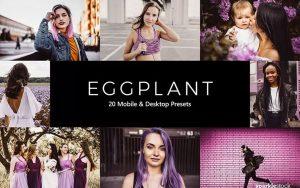 پریست لایت روم و پریست کمرا راو و لات رنگی تم رنگی بادمجانی Eggplant Lightroom Presets & LUTs