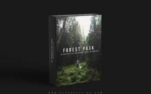 ۲۰ پریست رنگی حرفه ای لایت روم تم جنگل سبز K1 Forest Pack Presets