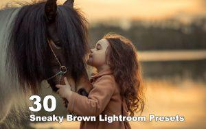 ۳۰ پریست رنگی لایت روم حرفه ای تم قهوه ای Sneaky Brown Lightroom Presets