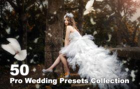۵۰ پریست آماده رنگی لایت روم عروسی Pro Wedding Presets Collection