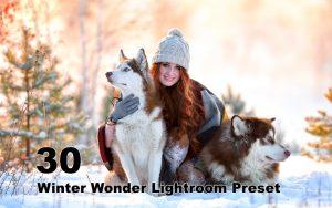 30 پریست لایت روم عکاسی زمستانی Winter Wonder Lightroom Preset