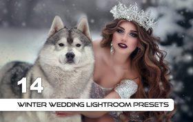 14 پریست لایت روم عروسی زمستانی Winter Wedding Lightroom Presets