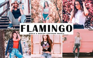 34 پریست لایت روم و کمرا راو و اکشن کمرا راو فتوشاپ تم آتش Flamingo Lightroom Presets