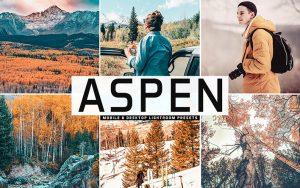 34 پریست لایت روم و Camera Raw و اکشن کمرا راو فتوشاپ تم صنوبر Aspen Lightroom Presets