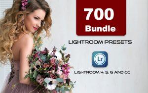 700 پریست رنگی لایت روم حرفه ای عکاسی 2021 Lightroom Presets Bundle