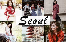 34 پریست لایتروم و Camera Raw و اکشن کمرا راو فتوشاپ تم سئول Seoul Lightroom Presets