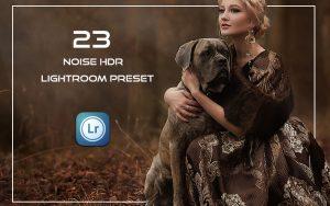 23 پریست لایت روم HDR فوق حرفه ای تم نویز Noise HDR Effect Lightroom Preset