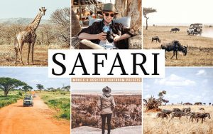 34 پریست لایت روم سفر آفریقا و کمراراو و اکشن کمرا راو فتوشاپ Safari Lightroom Presets