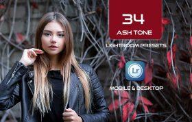 34 پریست لایت روم و Camera Raw و اکشن کمرا راو فتوشاپ تم نقره ای Ash Tone Lightroom Presets