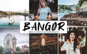 34 پریست لایت روم و Camera Raw و اکشن کمرا راو فتوشاپ Bangor Lightroom Presets