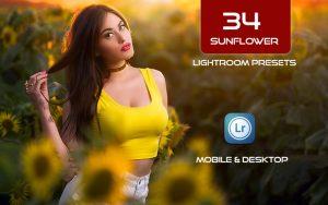 34 پریست لایت روم پرتره و Camera Raw و اکشن کمرا راو فتوشاپ گل آفتابگردان Sunflower Lightroom Presets
