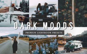 36 پریست لایت روم حرفه ای مسافرت Moody Matte Outdoor Travel Presets