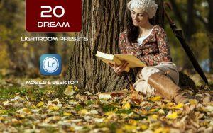 20 پریست لایت روم حرفه ای رنگی تم رویایی Dream Lightroom Presets
