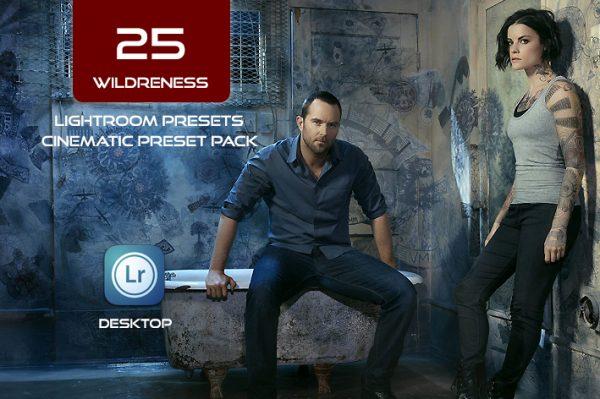 25 پریست لایت روم حرفه ای سینمایی WILDRENESS Cinematic Lightroom Preset Pack