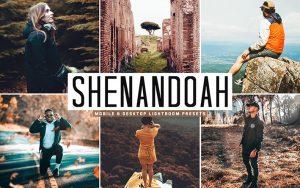 34 پریست لایت روم و Camera Raw و اکشن کمرا راو فتوشاپ Shenandoah Lightroom Presets