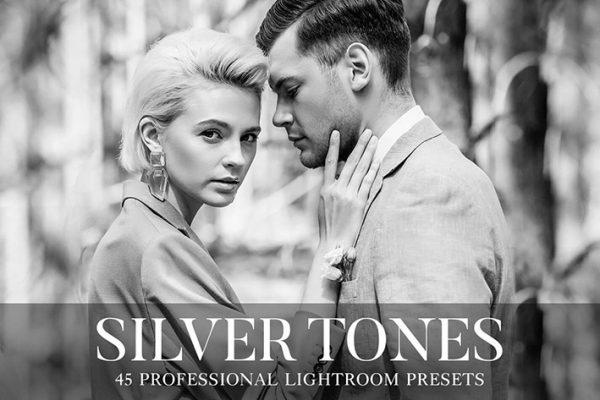55 پریست لایت روم و براش لایت روم تم نقره ای Silver Tones Presets Lightroom