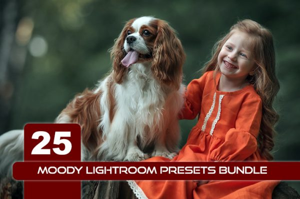 25 پریست لایت روم رنگی حرفه ای Moody Lightroom Presets Bundle