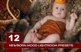 12 پریست لایت روم آتلیه نوزاد و پریست کمرا راو Newborn mood Lightroom Presets