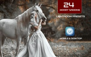 24 پریست لایت روم عروسی و پریست کمرا راو فتوشاپ Moody Wedding Lightroom Presets