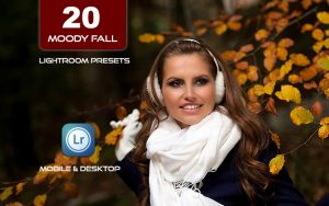 ۲۰ پریست لایت روم حرفه ای 2021 پاییزی Rich Moody Fall Lightroom Presets