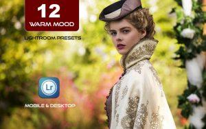 12 پریست لایت روم رنگی حرفه ای تم رنگ گرم Warm Mood Lightroom Presets