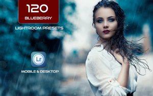 120 پریست لایت روم و پریست کمرا راو فتوشاپ و لات رنگی تم آبی Blueberry Lightroom Presets