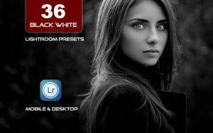 36 پریست لایت روم حرفه ای سیاه و سفید Black White Lightroom Presets