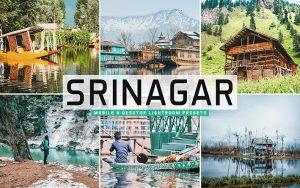 40 پریست لایت روم و کمرا راو و اکشن کمرا راو فتوشاپ تم سریناگار کشمیر Srinagar Lightroom Presets