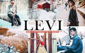 40 پریست لایت روم و کمرا راو و اکشن کمرا راو فتوشاپ Levi Lightroom Presets