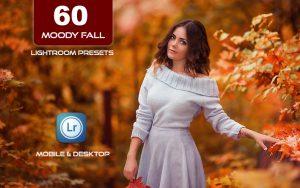 60 پریست لایت روم پاییز و پریست کمرا راو فتوشاپ Moody Fall Lightroom Presets