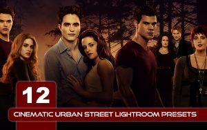 12 پریست لایت روم سینمایی و پریست کمرا راو فتوشاپ Cinematic Urban Street Lightroom Presets